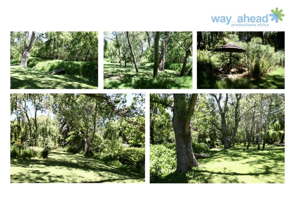 Gardens & Parks 4