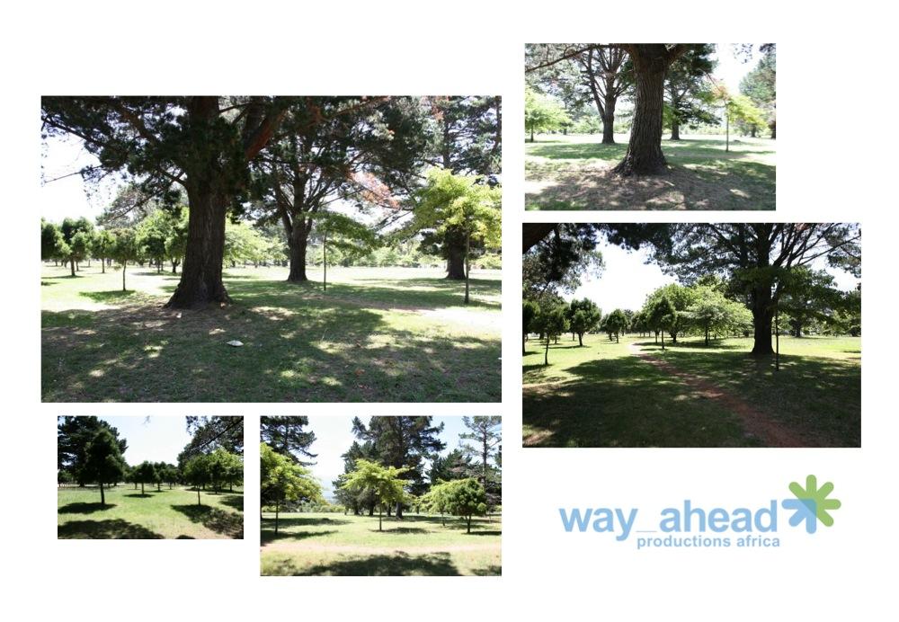 Gardens & Parks 1