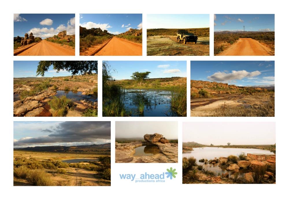 Landscapes 6