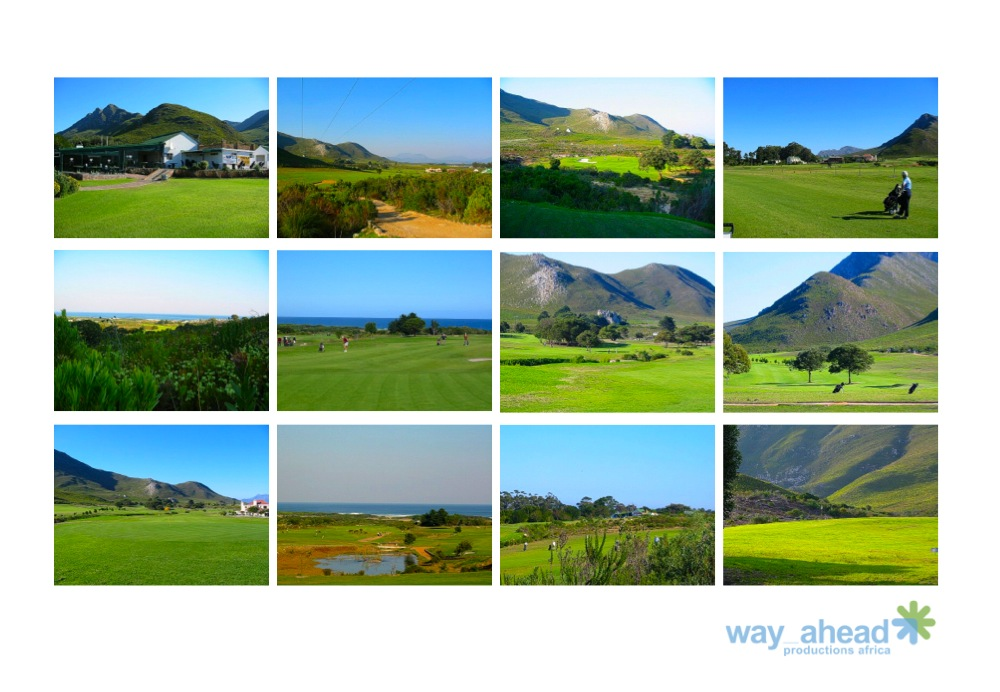 Golf Courses 11