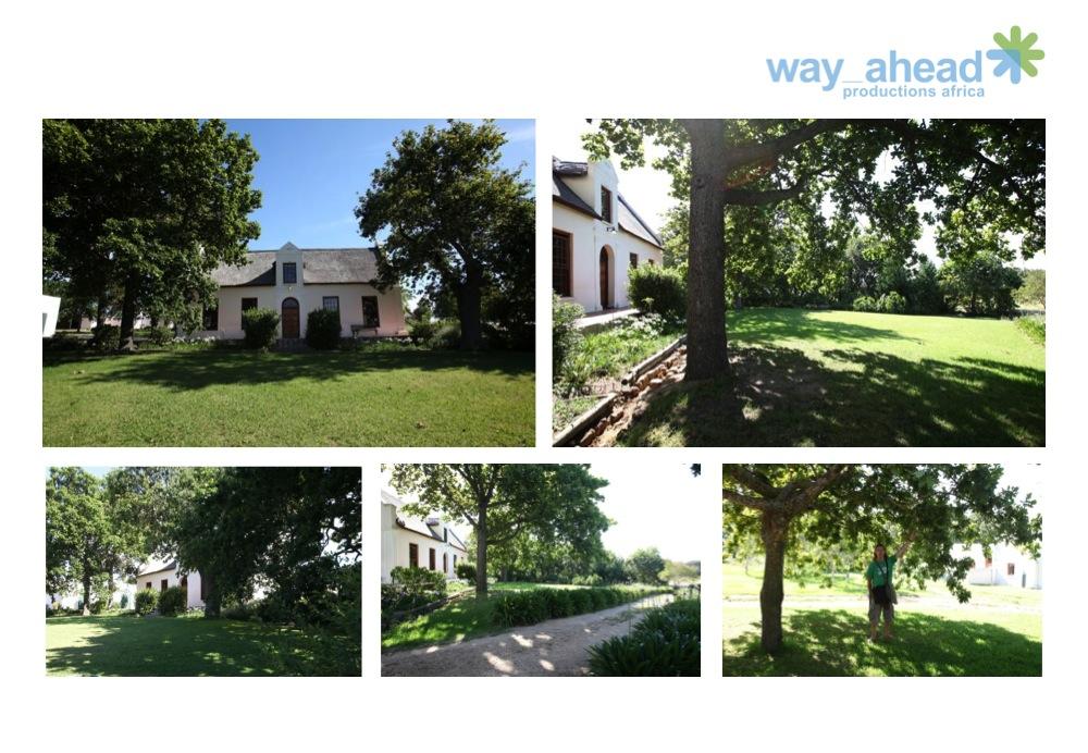Gardens & Parks 12