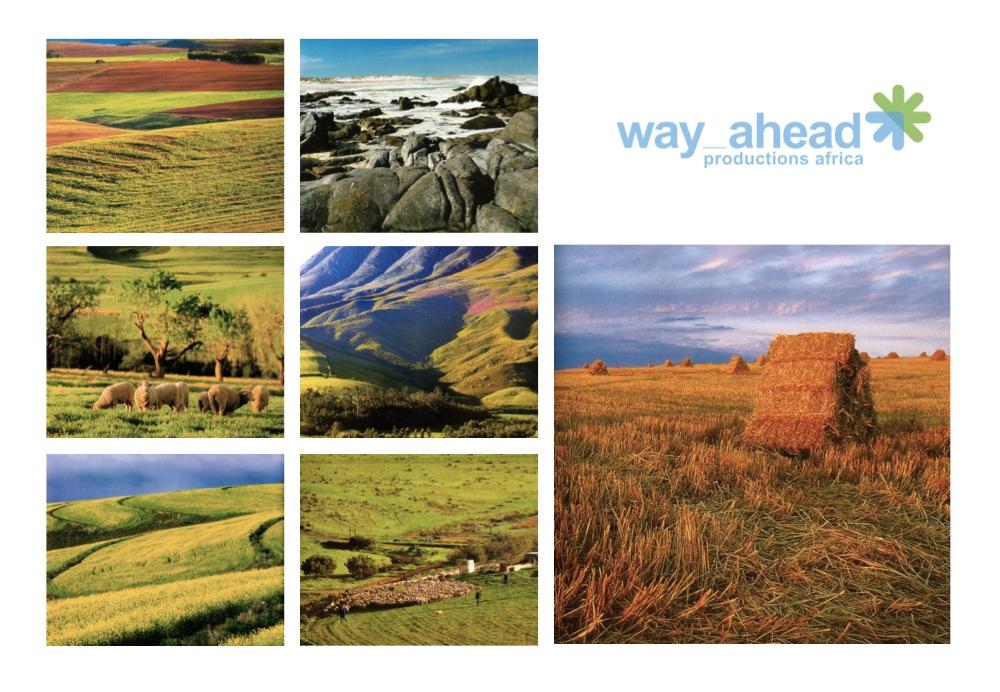 Landscapes 13