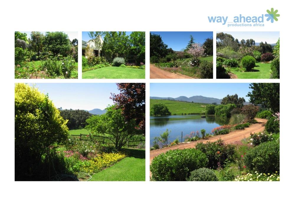 Gardens & Parks 19