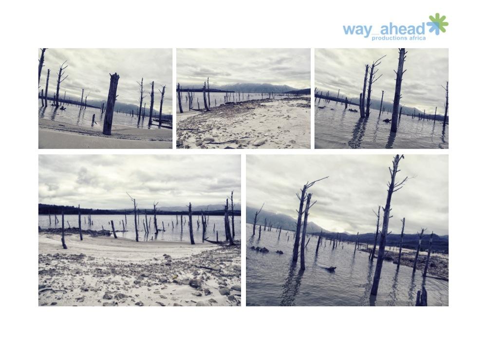 Landscapes 17